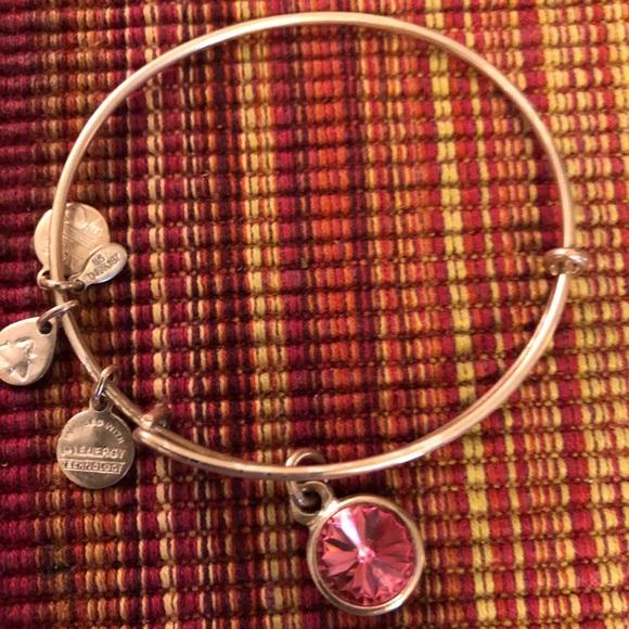 Alex And Ani Bracelet Cleaner Alert Bracelet